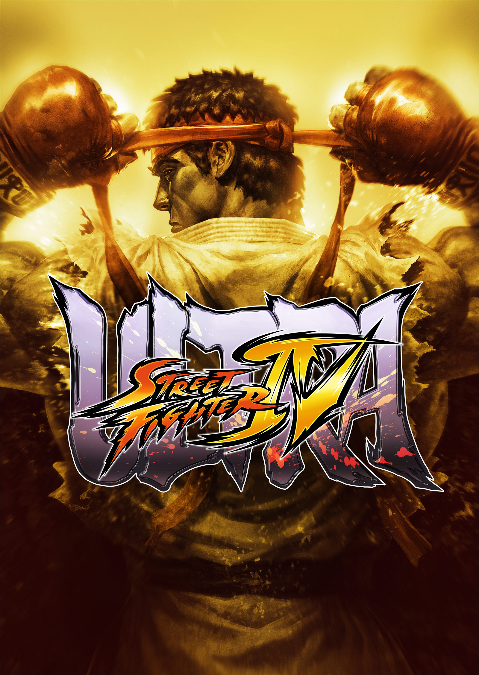 15_usf4artwork09.jpg