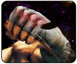 Weekend and Super Street Fighter 4 launch events, April  23 - 28