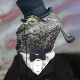 LowTierEvoPlayer47's avatar