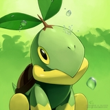 turtwigsfire13's avatar