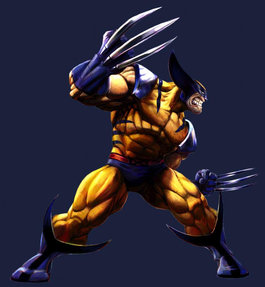 Marvel vs. Capcom 2 Wolverine artwork by Udon