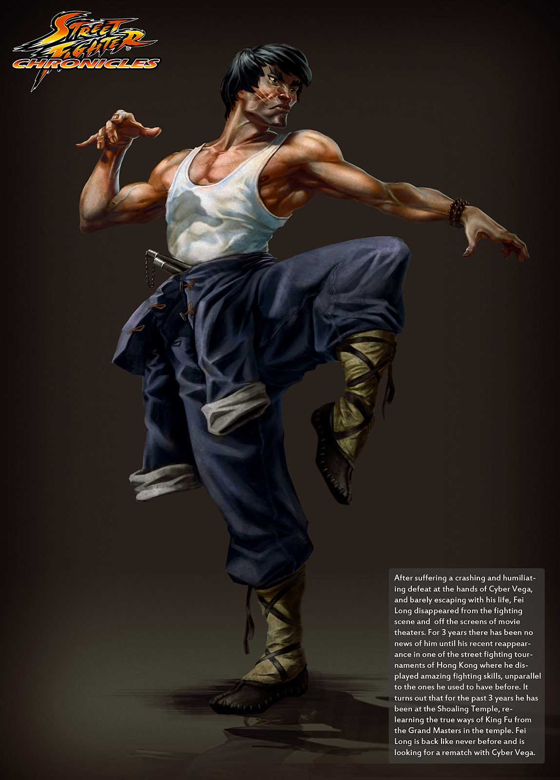Street Fighter Chronicles artwork by Arman Akopian #2
