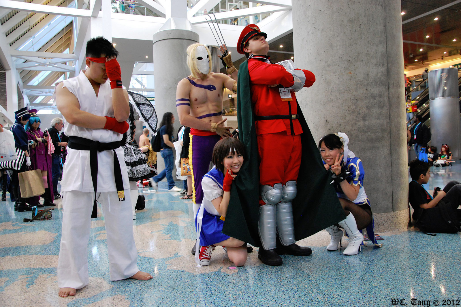 Fighting game cosplay gallery image #6