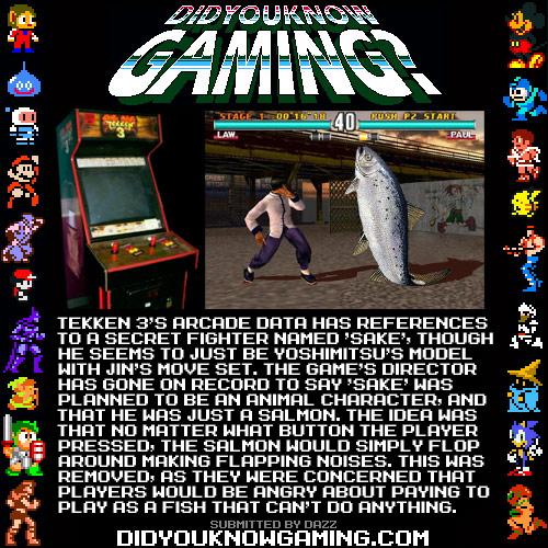 Did You Know Gaming's Tekken 3 character Sake
