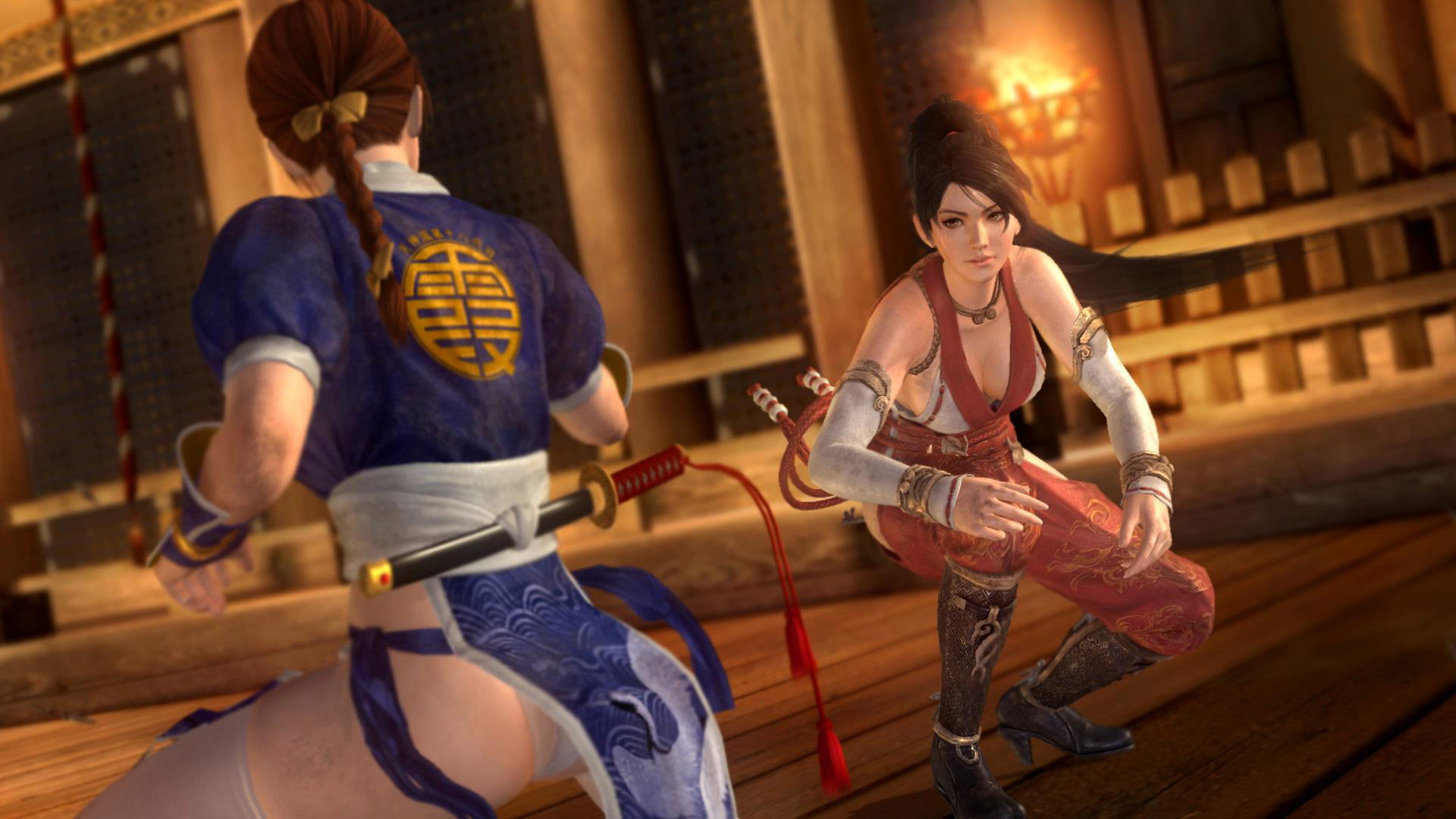 Dead or Alive 5 Ultimate screen shot #5