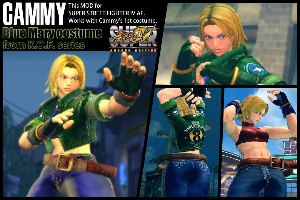 Blue Mary Super Street Fighter 4 Arcade Edition V2012 Pc Mod