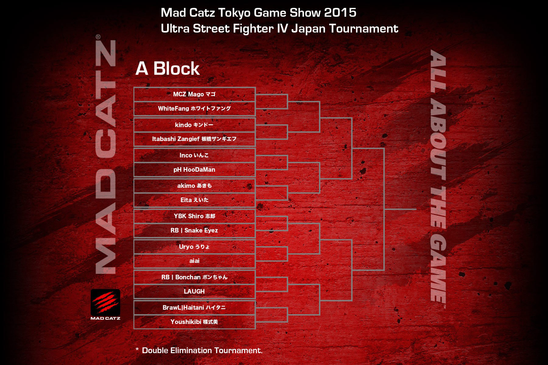 Tokyo Game Show 2015 USF4 bracket 1 out of 4 image gallery