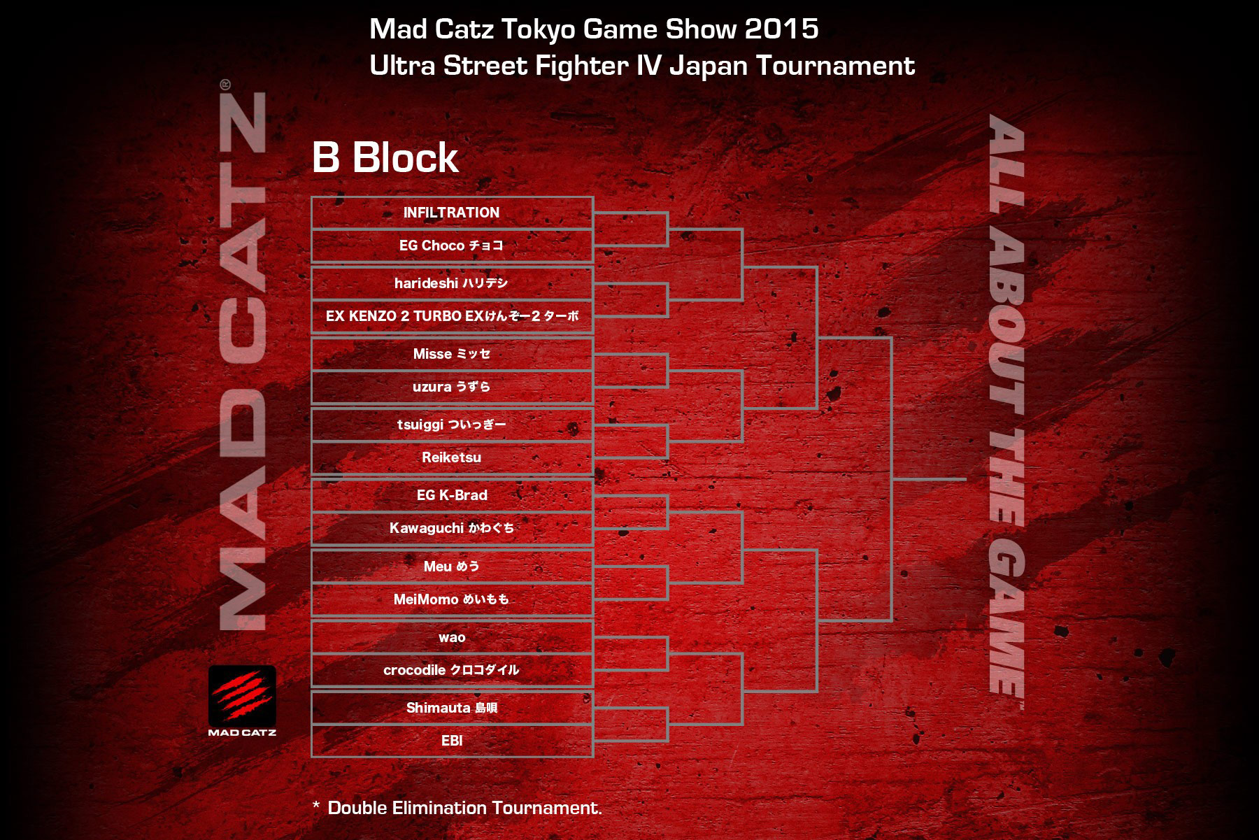 Tokyo Game Show 2015 USF4 bracket 2 out of 4 image gallery