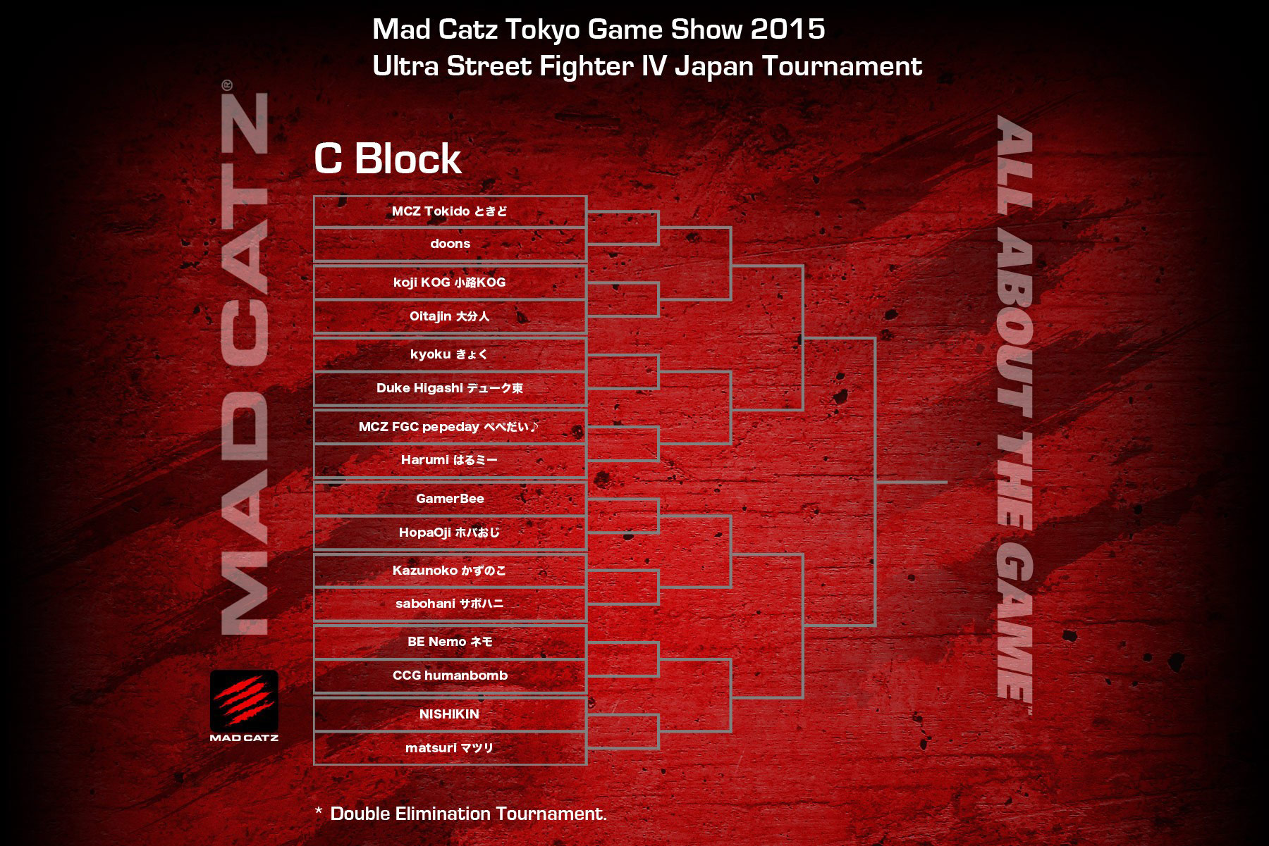 Tokyo Game Show 2015 USF4 bracket 3 out of 4 image gallery