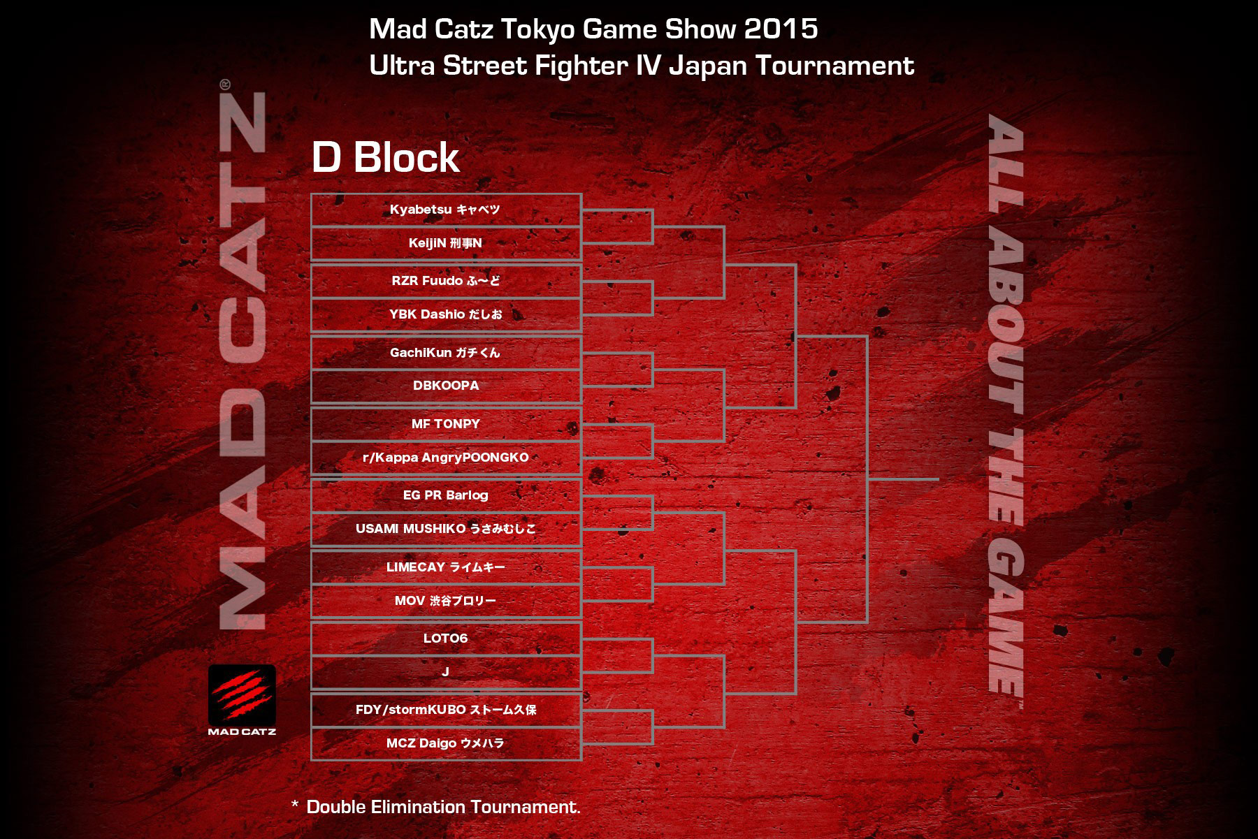 Tokyo Game Show 2015 USF4 bracket 4 out of 4 image gallery