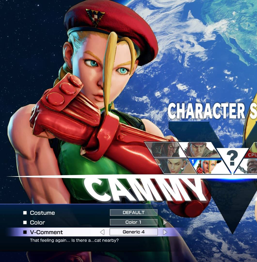 Ridiculous Street Fighter 5 V-Comments 3 out of 8 image gallery