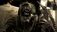 12 mkxkombatimages04t - 'Mortal Kombat X' DLC Gameplay Trailer Features New Playable Characters