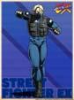 Street Fighter 5 Doctrine Dark Profile image #1