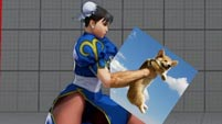 DemonDan14's fighting game-related dog memes  out of 10 image gallery