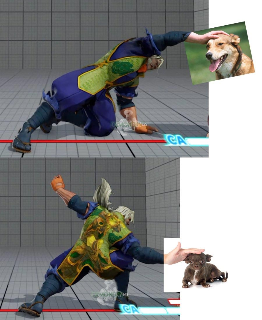 DemonDan14's fighting game-related dog memes 5 out of 10 image gallery