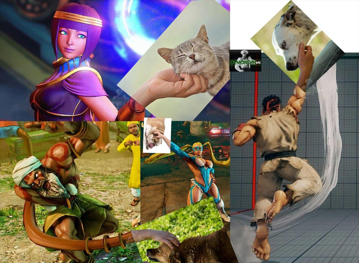 DemonDan14's fighting game-related dog memes 8 out of 10 image gallery