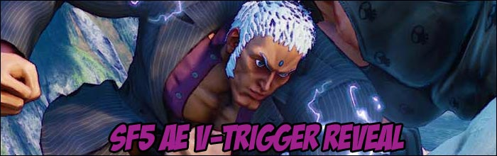 Brand New Second V Trigger Images Revealed For All Street Fighter 5 Characters