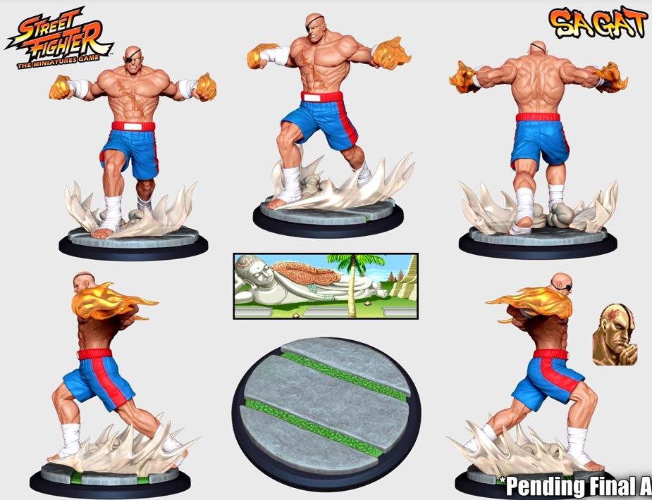 Street Fighter: The Miniatures 8 out of 9 image gallery