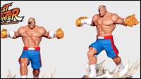 Street Fighter: The Miniatures image #8