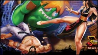 Street Fighter 2 tribute shirt image #1