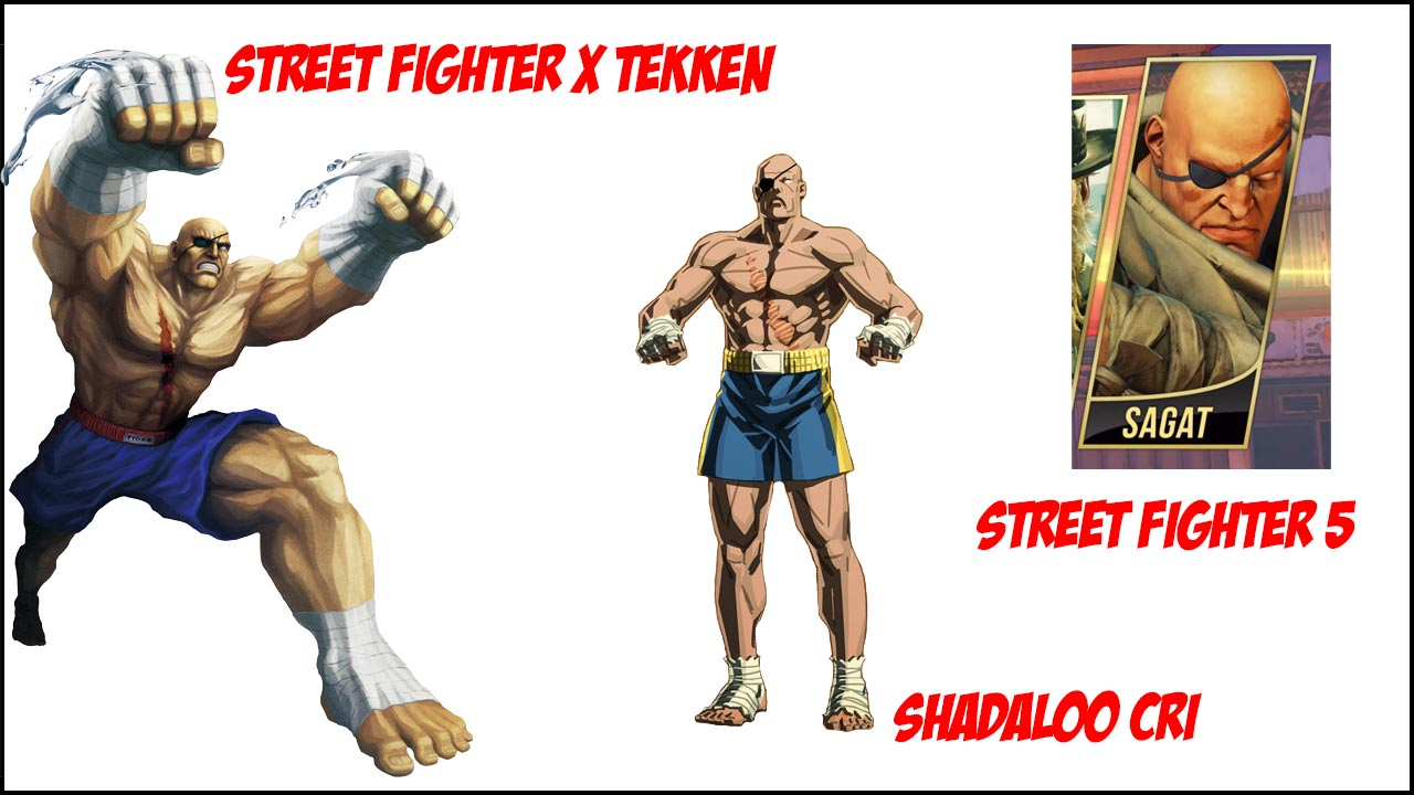 Sagat visual history 5 out of 6 image gallery