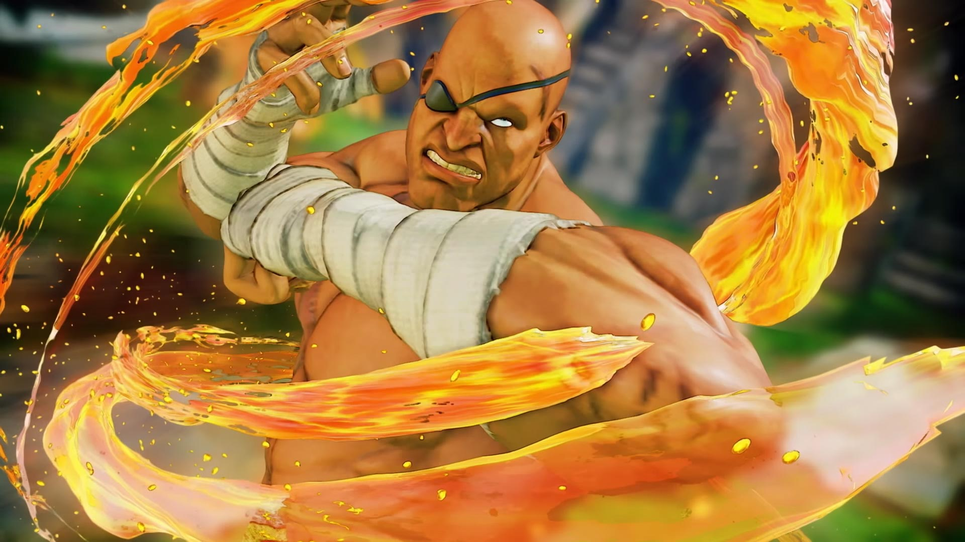 G and Sagat Street Fighter 5: Arcade Edition 5 out of 15 image gallery