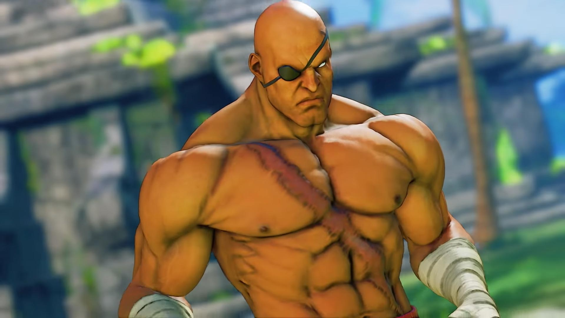 G and Sagat Street Fighter 5: Arcade Edition 7 out of 15 image gallery