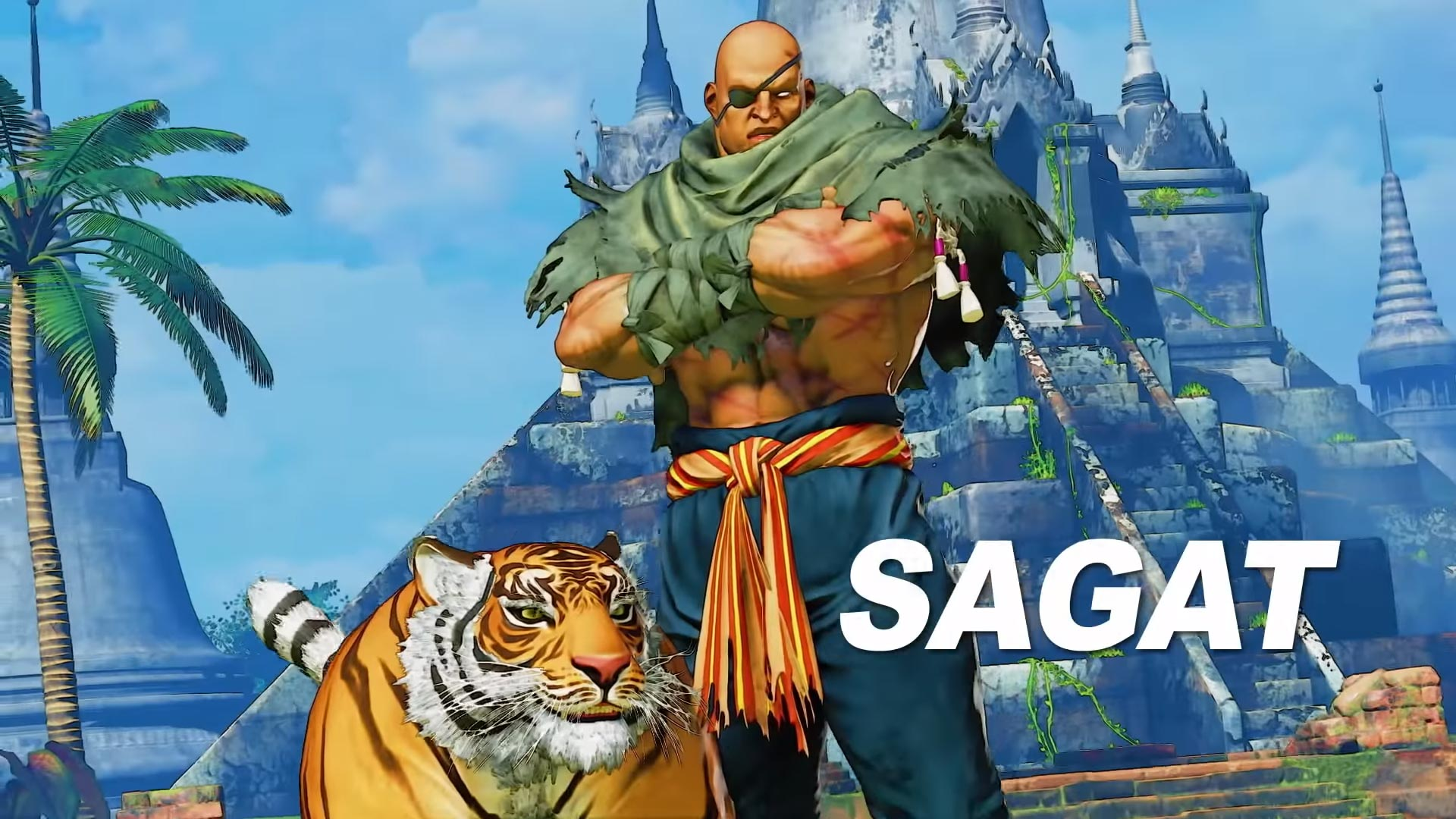 G And Sagat Street Fighter 5 Arcade Edition 13 Out Of 15 Image