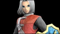 Dragon Quest Hero's Costumes image #4