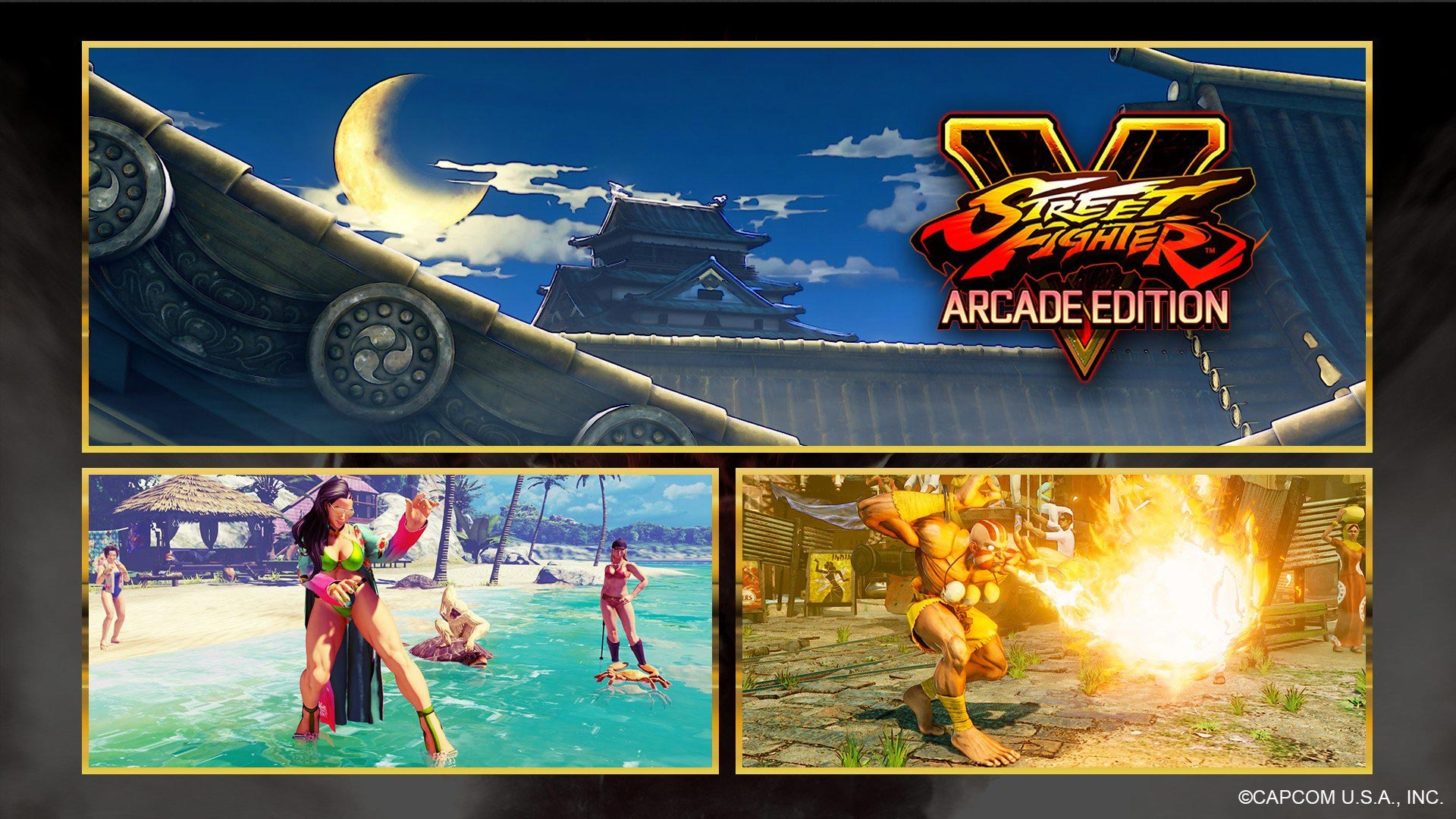 New Street Fighter 5 costumes and stage 1 out of 8 image gallery