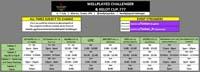 Wellplayed Challenger Osaka Event Schedule image #1