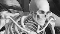 E. Honda skeleton image #1