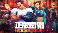 Street Fighter Duel image #1