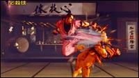 Dan SF5 gameplay image #7