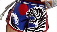 Joe Higashi in King of Fighters 15 image #1