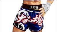 Joe Higashi in King of Fighters 15 image #3