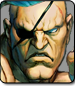 Sagat in Ultra Street Fighter 4 Omega Edition