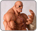 Exclusive Street Fighter toys at Comic Con 2008