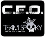 CEO 2011 results
