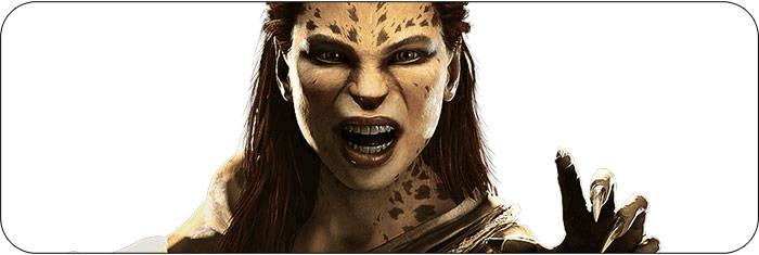 Cheetah Injustice 2 artwork