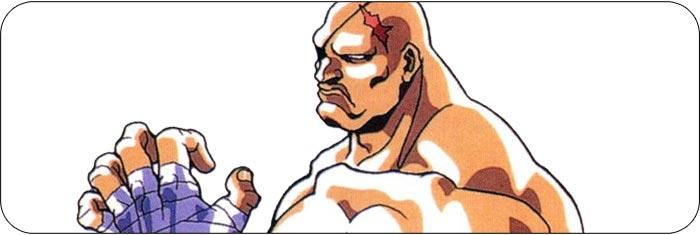 Sagat Street Fighter 2 Turbo artwork