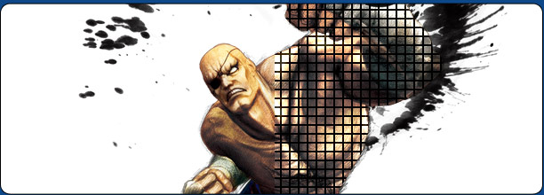 Sagat Frame Data Super Street Fighter 4 Arcade Edition