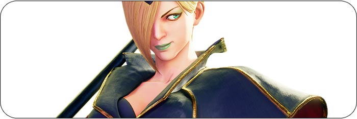 Falke Street Fighter 5: Arcade Edition artwork