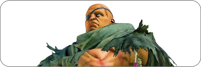 Sagat Street Fighter 5: Champion Edition artwork