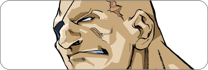 Sagat Street Fighter Alpha 3 artwork