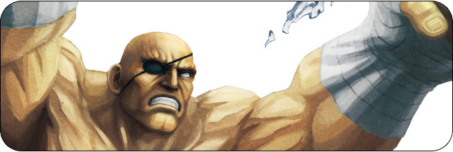 Sagat Street Fighter X Tekken Character Guide