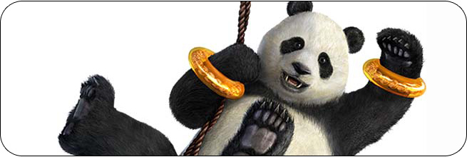 Panda Tekken Tag Tournament 2 Moves, Characters, Combos and Strategy Guides